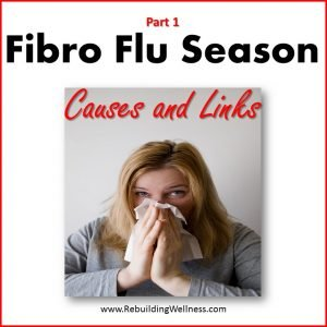 Fibro Flu Causes Links