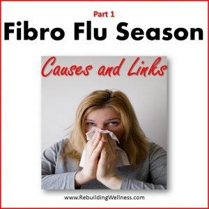 Fibro Flu Causes Links