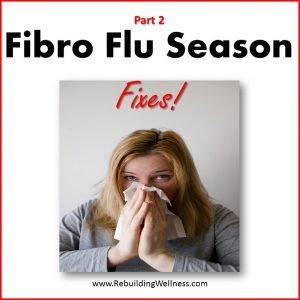 Fibro Flu Fixes
