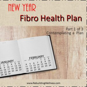 New Year Fibro Health Plan - 1