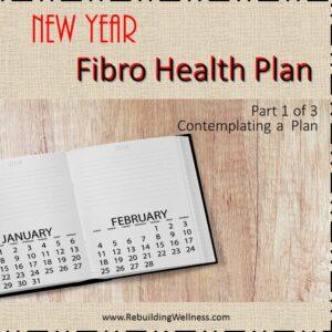 New Year Fibro Health Plan - 1